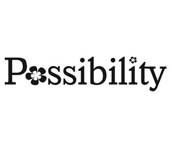 Bilde til produsenten Possibility